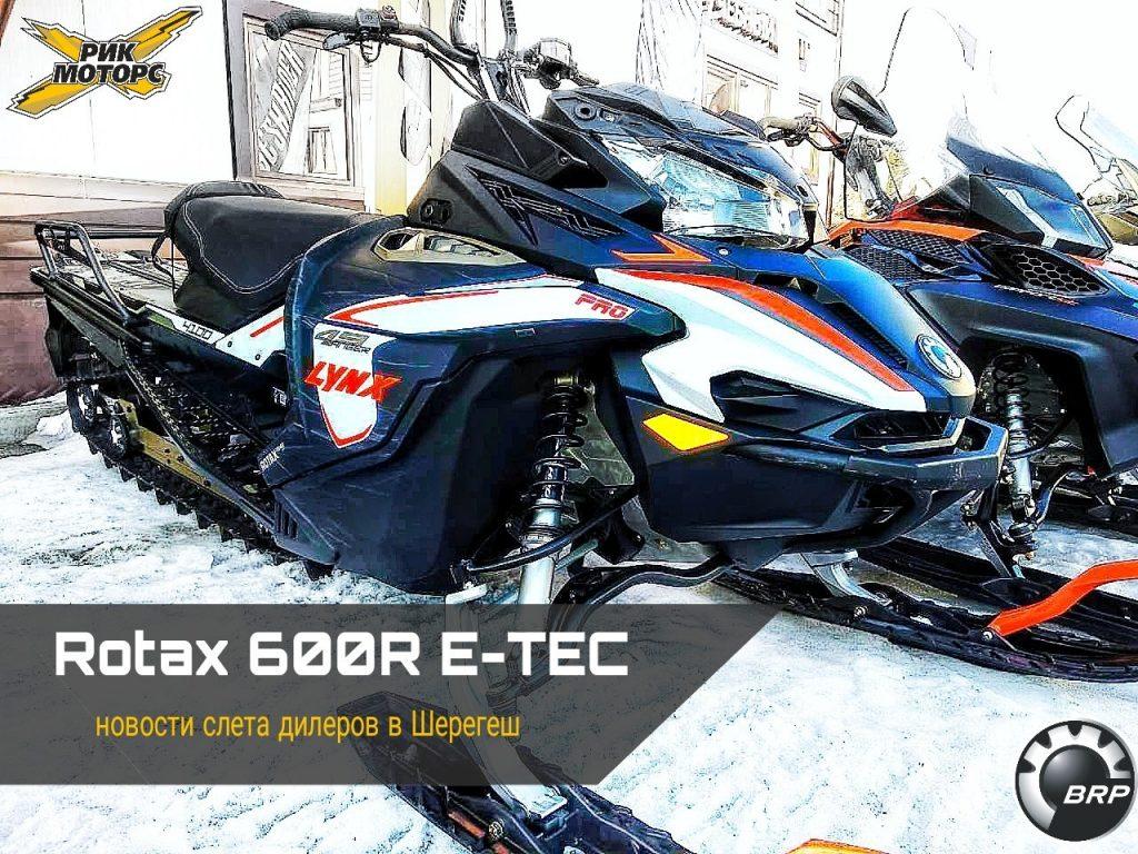 Rotax 600R E-TEC